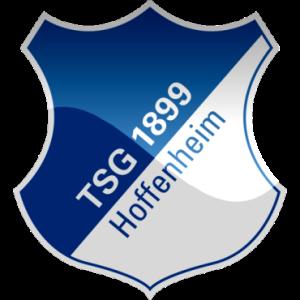 hoffenheim-tsg-hd-logo
